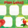 plan-lekcji-maly-polsyr-9