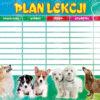plan_lekcji-A5-polsyr-3