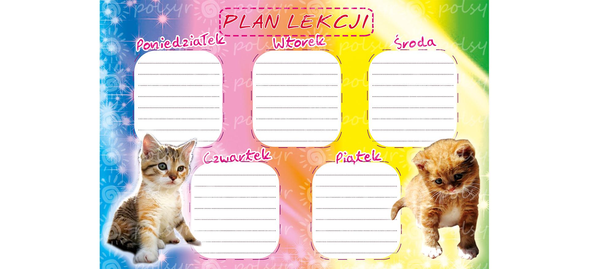 plan_lekcji-duzy-polsyr-10