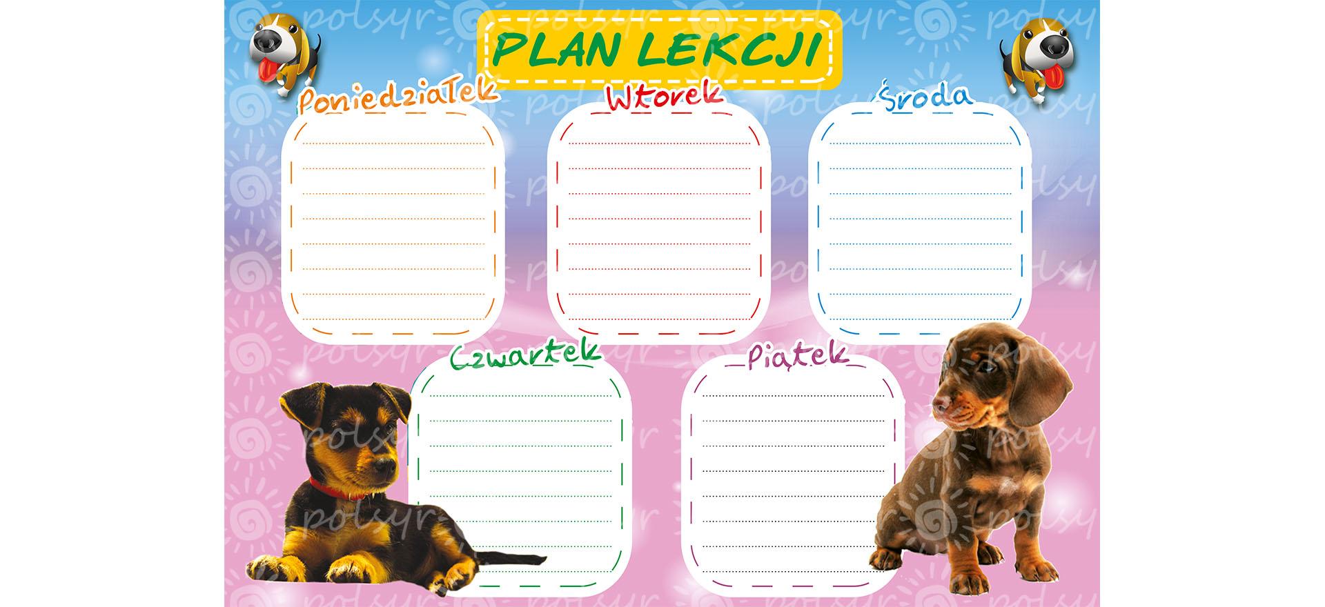 plan_lekcji-duzy-polsyr-11