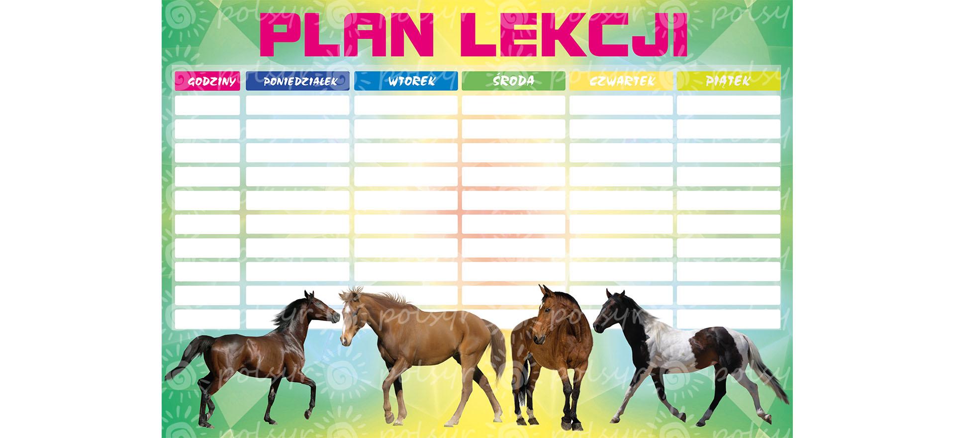 plan_lekcji-duzy-polsyr-2