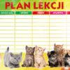 plan_lekcji-duzy-polsyr-3
