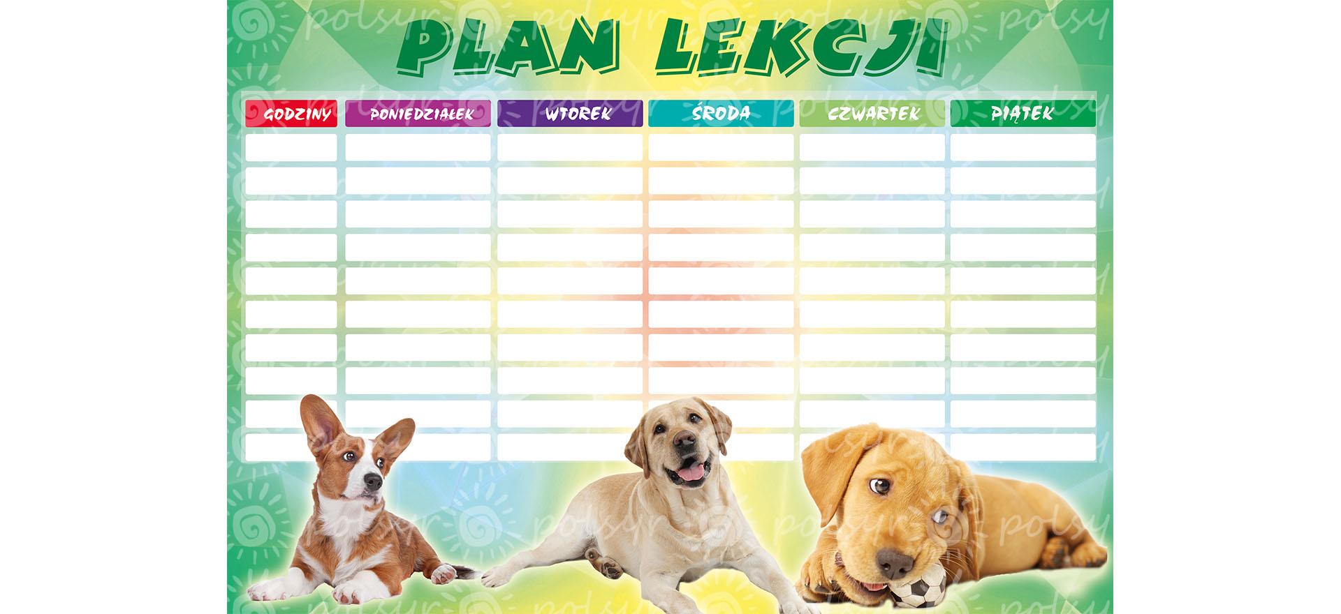 plan_lekcji-duzy-polsyr-6