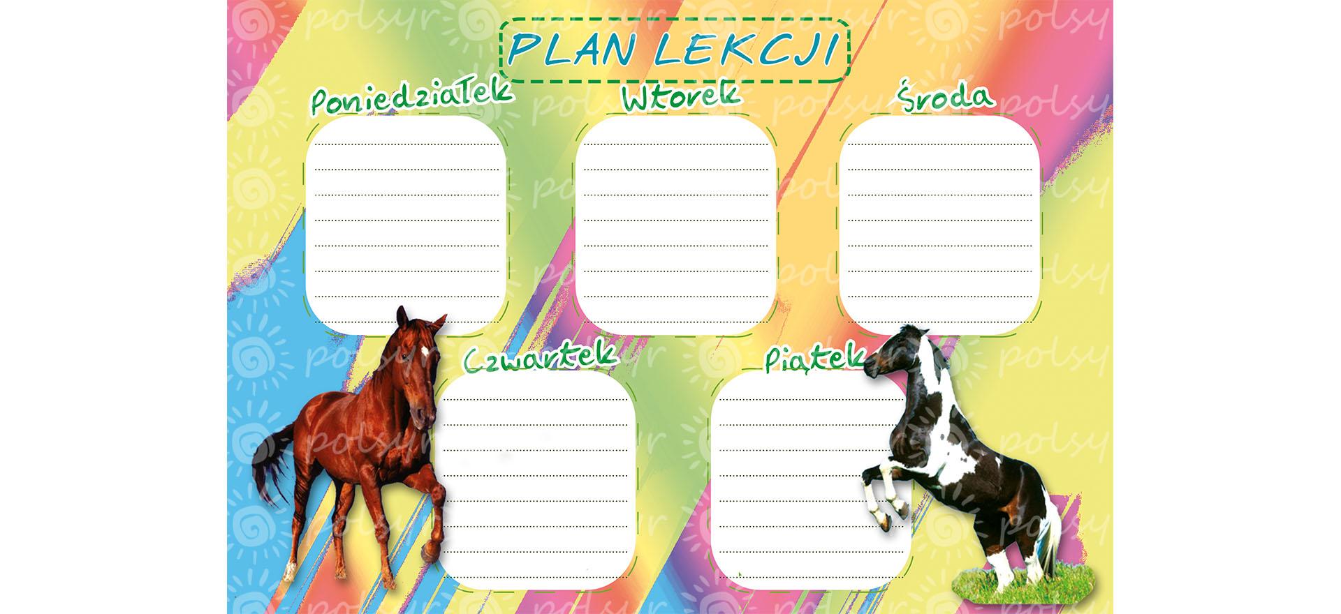 plan_lekcji-duzy-polsyr-9